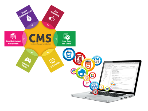 Dynamic Website Development services in Ahmedabad